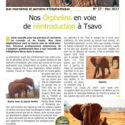 Journal des éléphanteaux 27