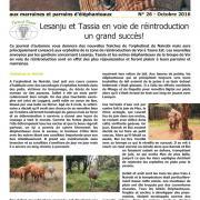 Journal des éléphanteaux 26