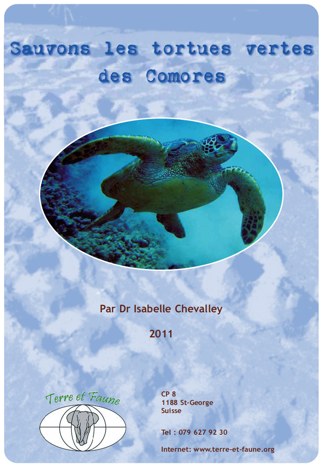 Tortues vertes 2011