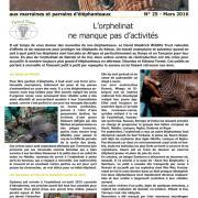 Journal des éléphanteaux 25