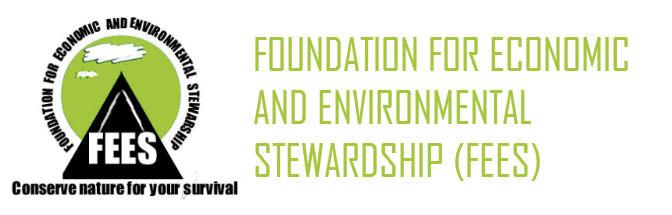 Logo FEES