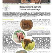 Journal des éléphanteaux 24