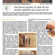 Journal des éléphanteaux 23