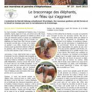 Journal des éléphanteaux 19