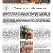 Journal des éléphanteaux 18