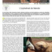 Journal des éléphanteaux 16