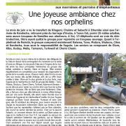 Journal des éléphanteaux 14