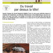 Journal des éléphanteaux 12
