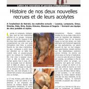 Journal des éléphanteaux 10