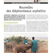 Journal des éléphanteaux 05
