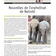 Journal des éléphanteaux 04