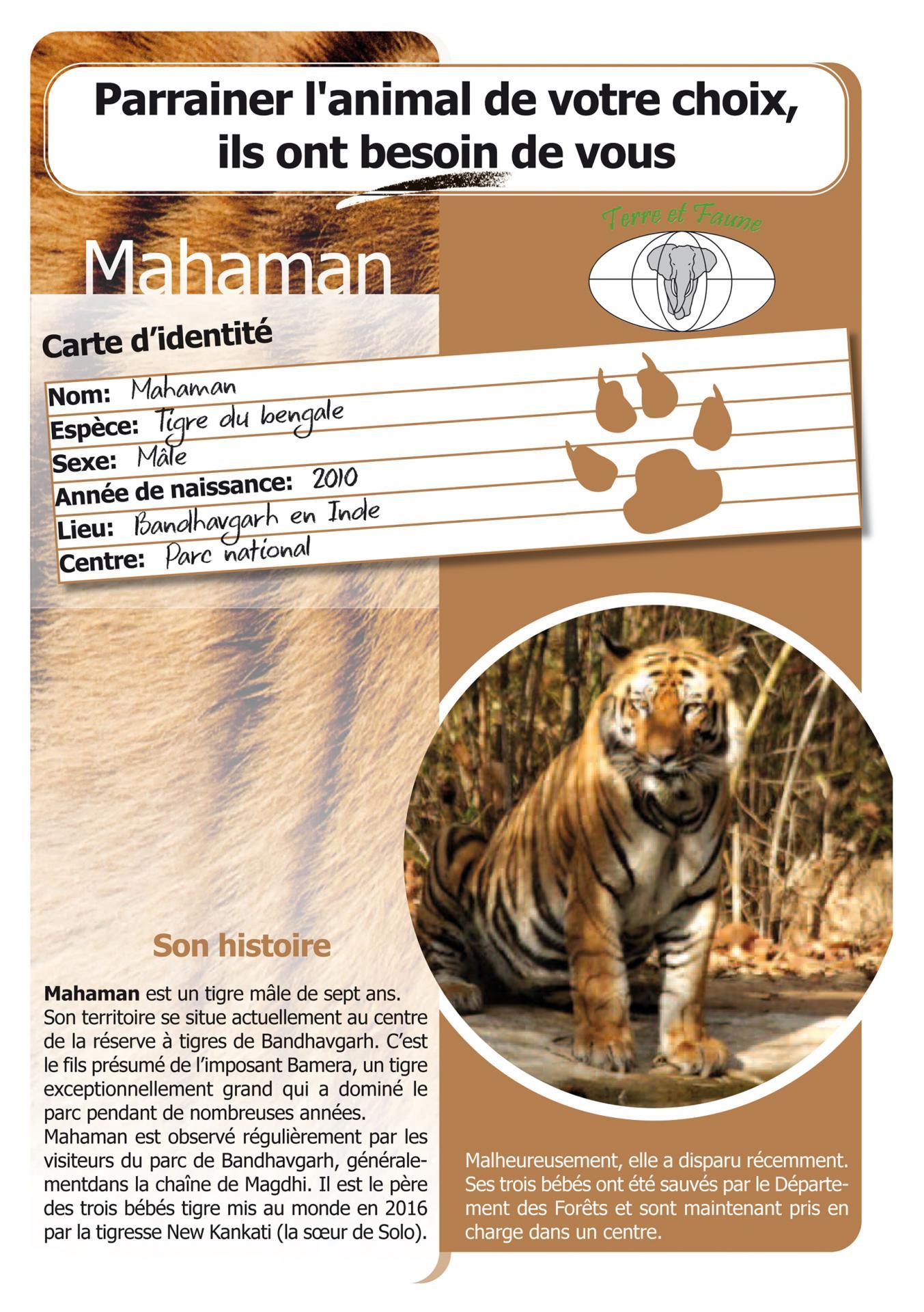 Mahaman